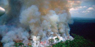 Amazônia pegando fogo